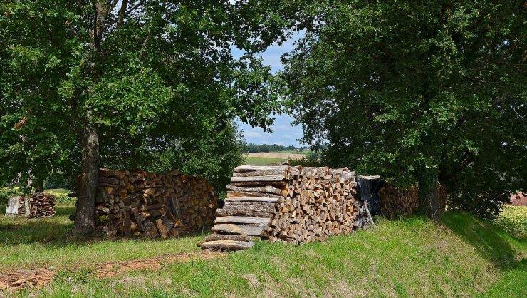 Le bois est une énergie renouvelable