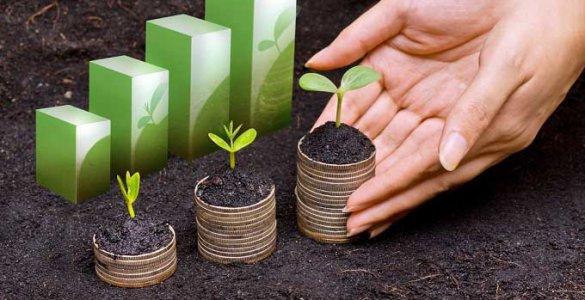 Investissement Vert