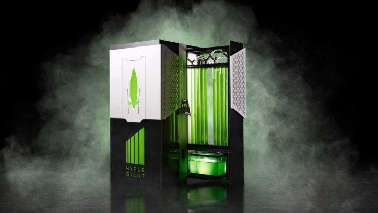 Un bioréacteur fonctionnant avec des algues absorbe 400 fois plus de CO2 que les arbres