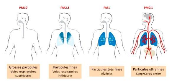 Pollution de l'air: les particules fines sont les plus dangereuses